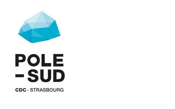 POLE SUD <em> — Image de marque </em>